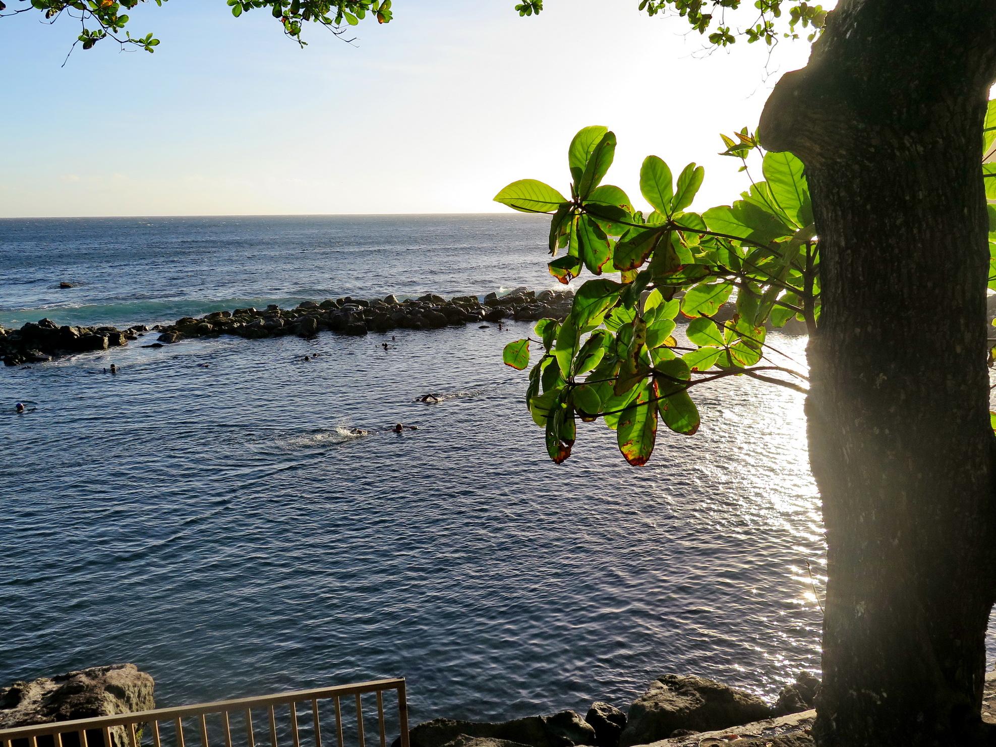 [Vie des ports] Les ports de la Réunion - Page 4 724878IMG0301