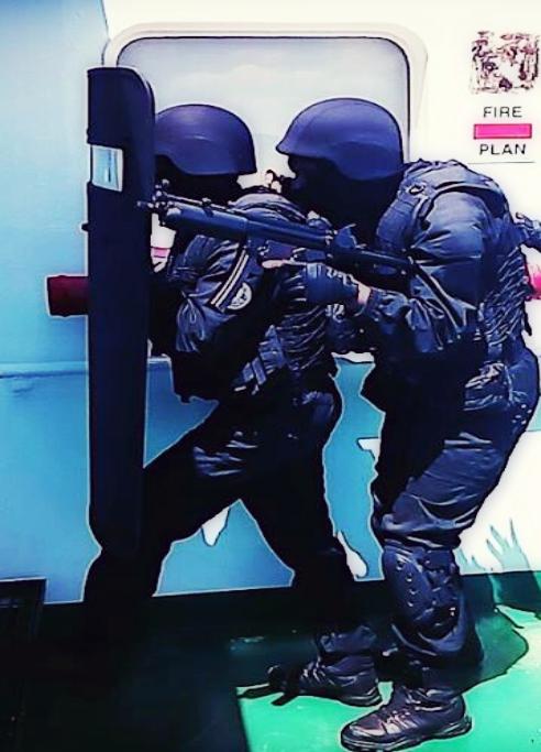 Armée Tunisienne / Tunisian Armed Forces / القوات المسلحة التونسية - Page 3 7257641343223217443043925151896414212717637380470n