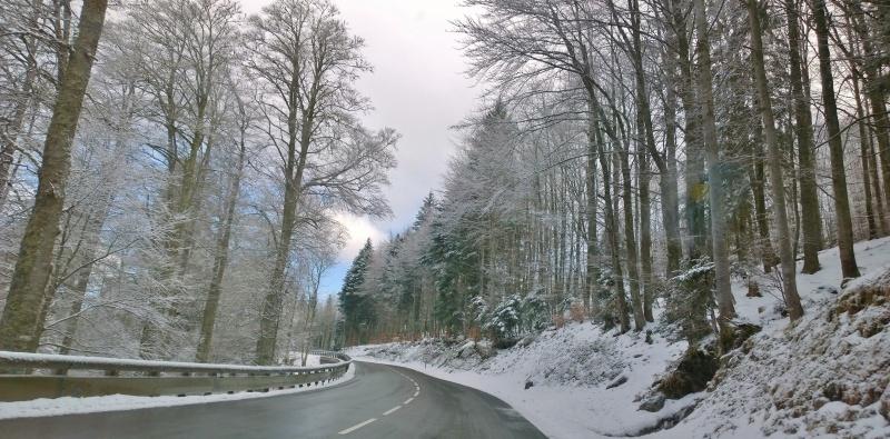 Week-end tourbières dans les Vosges 733334WP20150405101100Pro