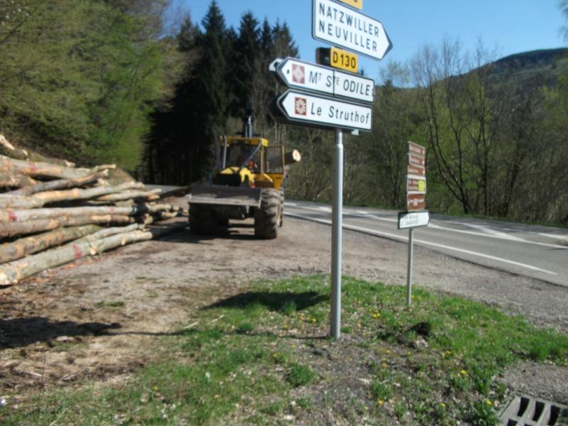 Du débardage dans les Vosges, à Hauteur de Schirmeck 737553011