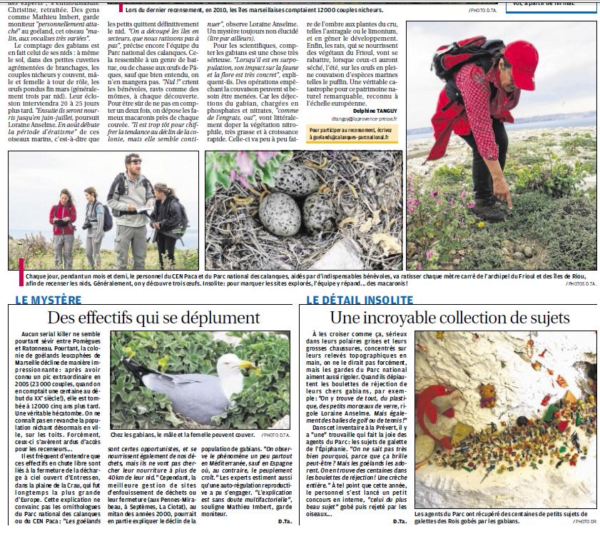 LA FAUNE ANIMALE MEDITERRANEENNE - Page 13 7376477241