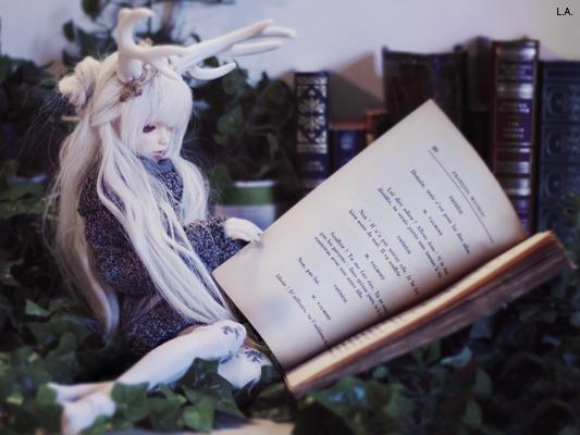 [Mc Carty Family] Rose & Ivy [Dreaming Doll Airi] 738384454