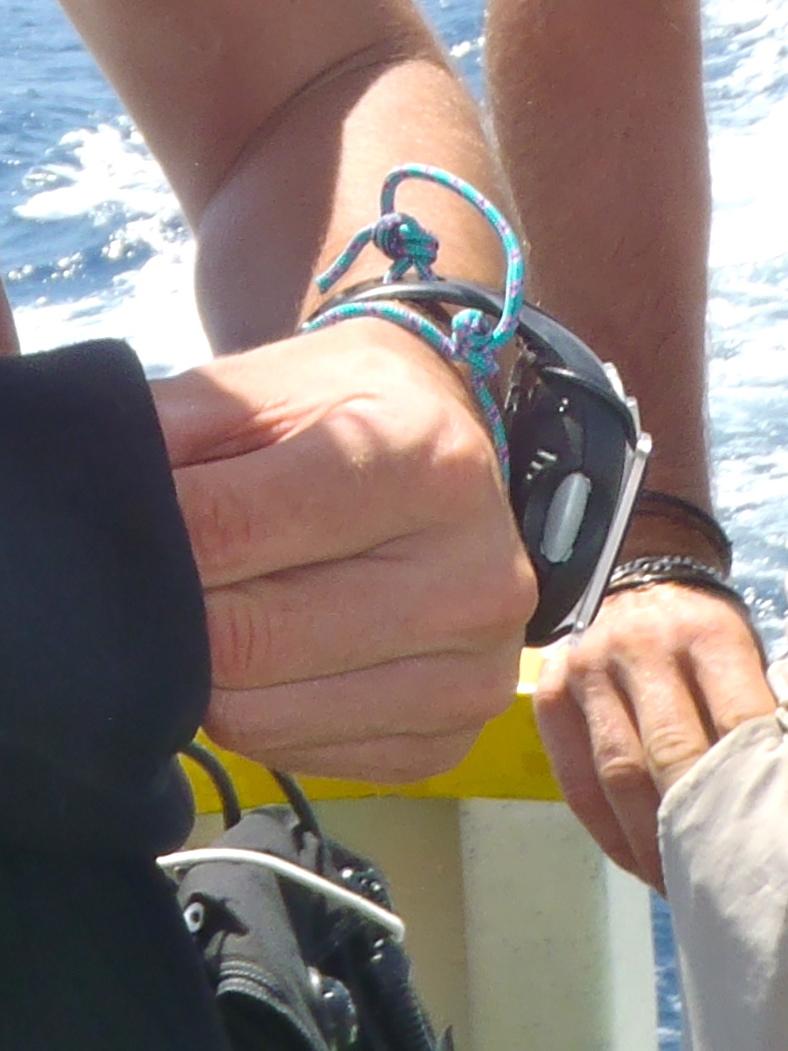A quoi sert une montre de plongée de nos jours ? - Page 5 738756P7090104