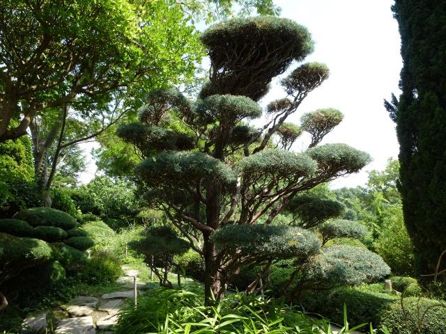 (26) Jardin Zen d'Erik Borja - Beaumont Monteux 740869P1020116
