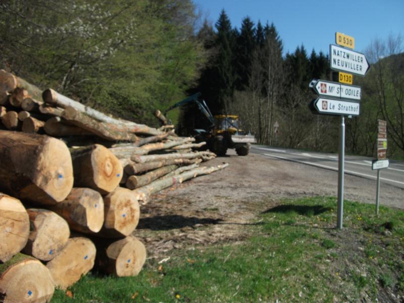 Du débardage dans les Vosges, à Hauteur de Schirmeck 746978006