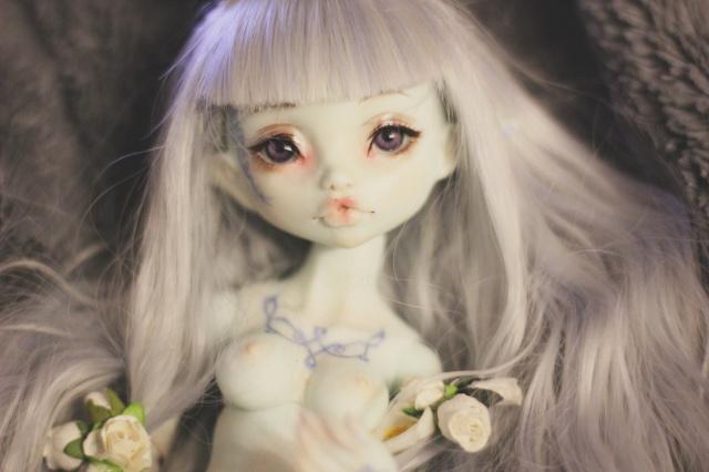 Delirium's Dolls~ Kinokojuice Haine P8 - Page 2 752413IMG3635copie