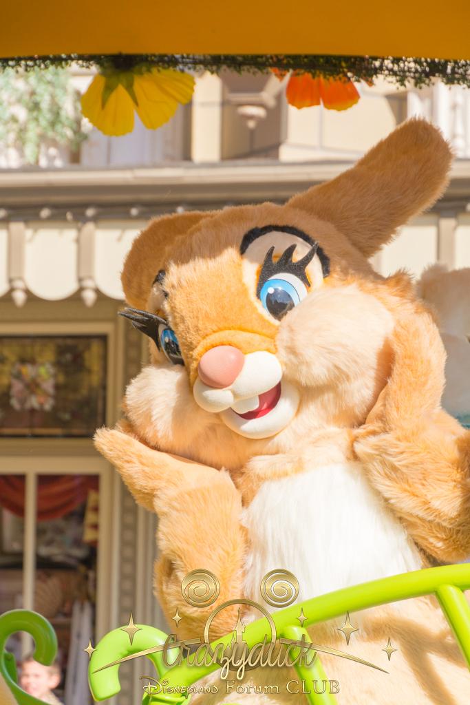 Festival du Printemps du 1er mars au 31 mai 2015 - Disneyland Park  - Page 10 752544dfc23