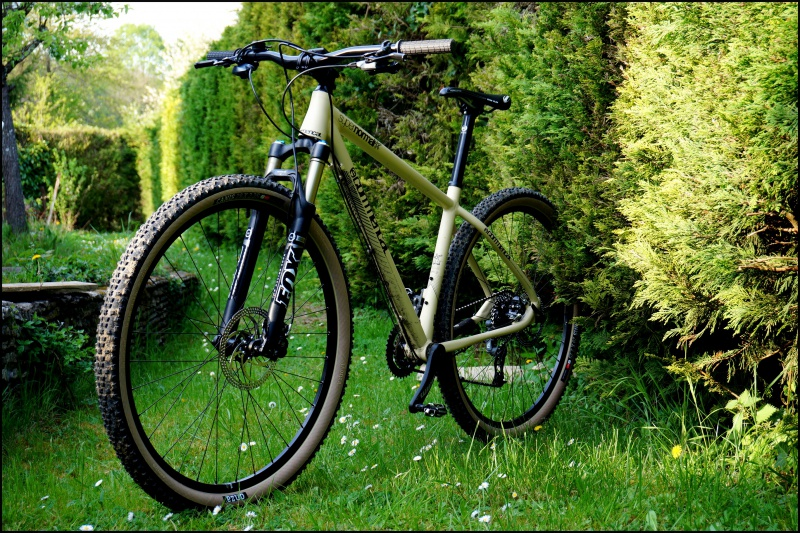 "[ JuLDeSiGn ] Commencal Supernormal 29"" 753680602287DSC03379"