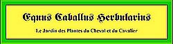 INDEX et INDICATIONS Plantes Utiles aux Chevaux. 762825zcmn9wja
