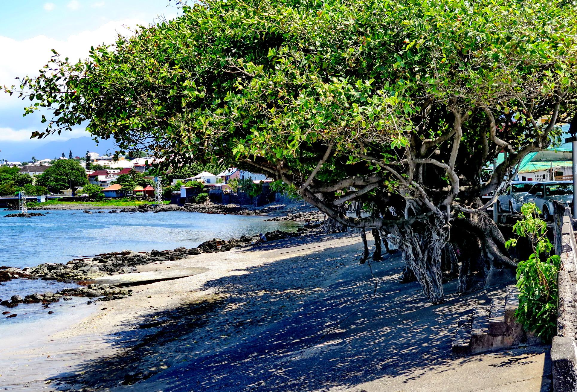 [Vie des ports] Les ports de la Réunion - Page 4 776178IMG0420