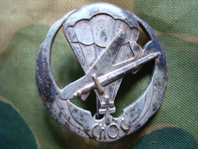 LES INSIGNES DU BATAILLON DE CHOC 1943/1963. 779947N22insigneRICAP