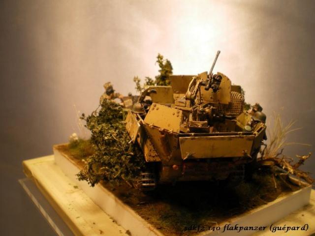 sd.kfz 140 flakpanzer (gépard) maquette Tristar 1/35 - Page 3 780590IMGP3249