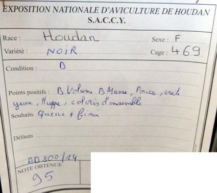 exposition d'aviculture Foire ST MATTHIEU 27 et 28 Septembre 2014 - Page 3 783698P1150821