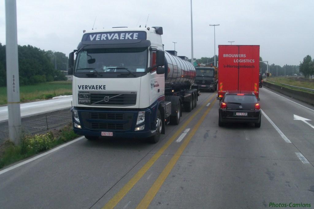 Vervaeke (Zelik) 790198photoscamions7VI1160Copier
