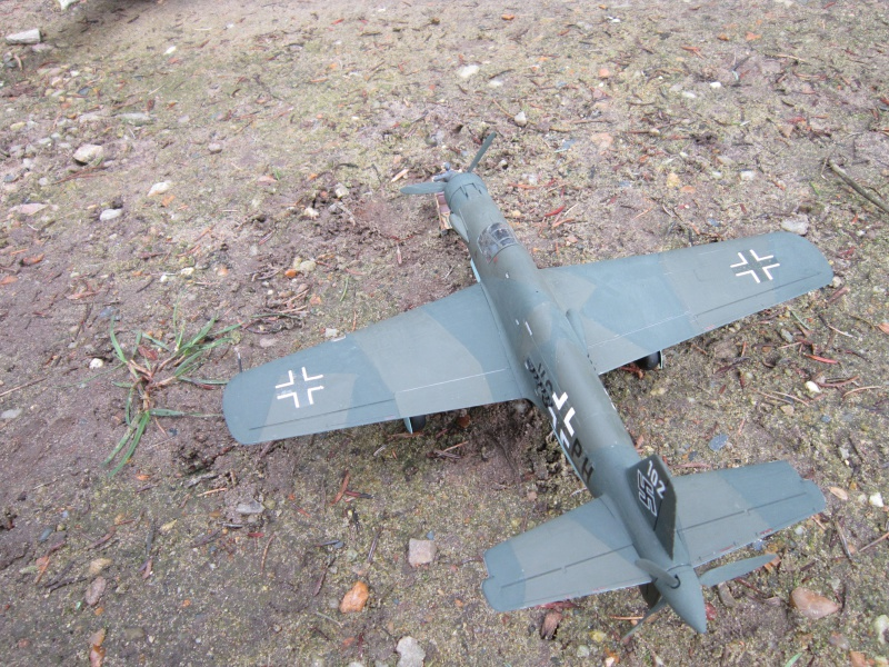 Dornier 335 A PFEIL de Tamiya au 1/48 par Pascal 94 790874IMG4144