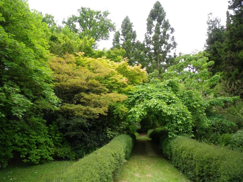 (40) Plantarium et chemin de ronde - Gaujacq - Page 2 798217IMGP4538