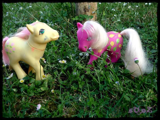 Les petits poneys de sOoZ - G1 à G5 800592P1140847