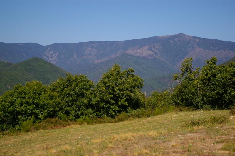 Les Cevennes autour du Mt Aigoual 800743IMGP2622