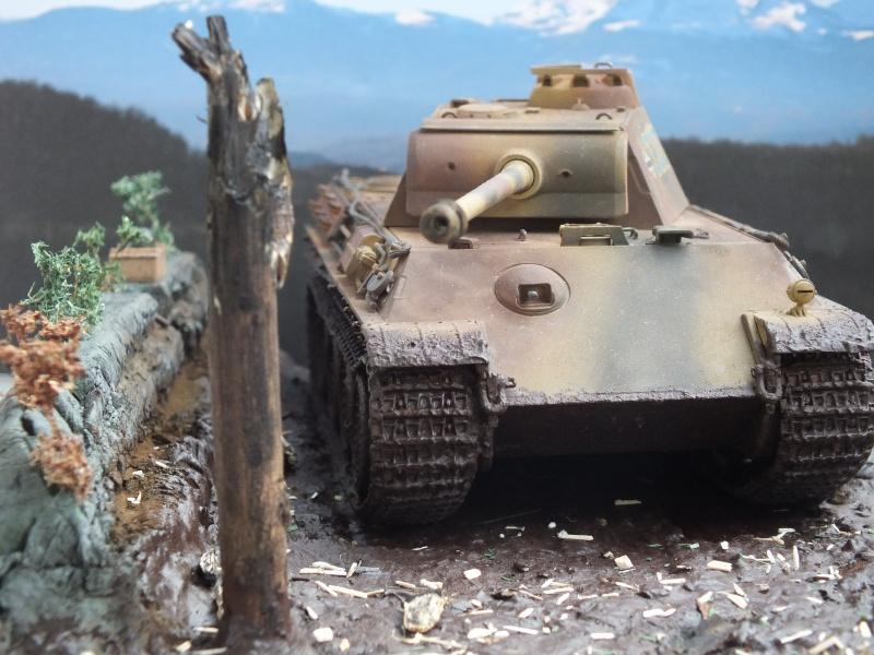 Ardennes Belges ,  mi-septembre 1944... 800876DSCF7275