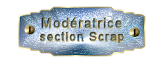 modérateur section scrap