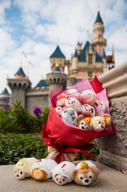[Hong Kong Disneyland Resort] Le Resort en général - le coin des petites infos - Page 8 821232w243