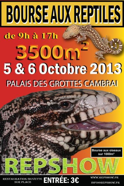 Bourse Aux Reptiles de Cambrai 05/06 Octobre 2013 824648affichebourse2013