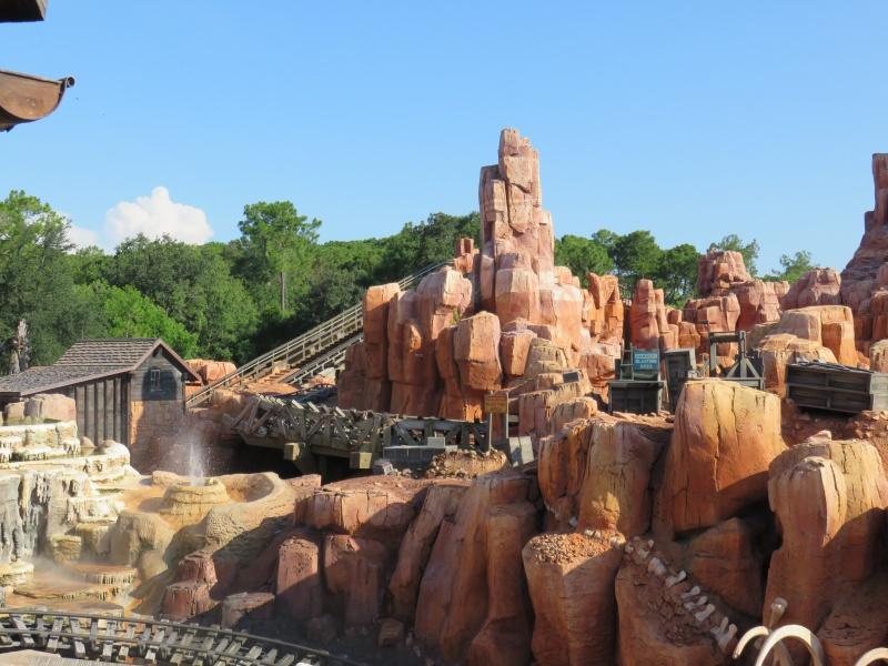 Walt Disney World + Universal Studios + Sea World + Busch Gardens Summer 2014 - Page 4 827393IMG0791