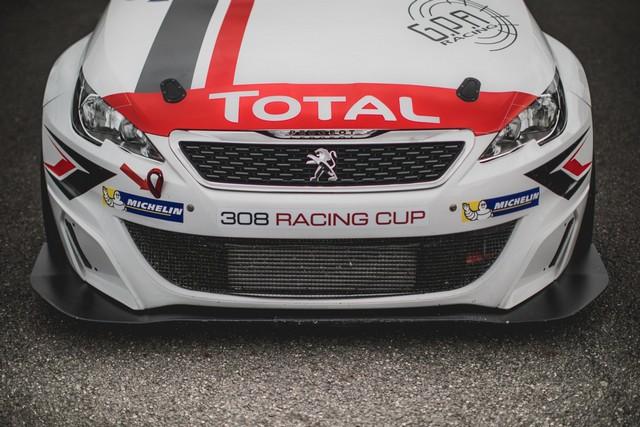 Julien Briché 1er Lauréat De La 308 Racing Cup ! 83037859b540316ff05zoom