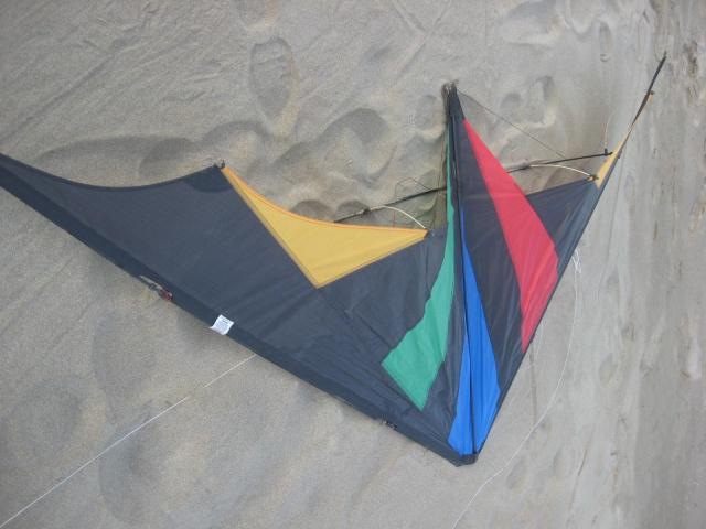 cerf-volant acrobatique 2 lignes de chez HQ  50 euros  832704IMG5172