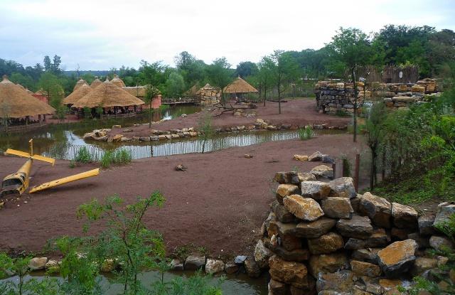 Disney's Animal Kingdom, un parc animalier comme les autres? 835267PairiDaiza2012098