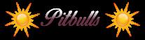 Pitbull modératrice
