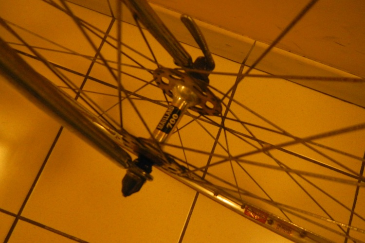 Gitane bleu 1976  839953DSCN6145