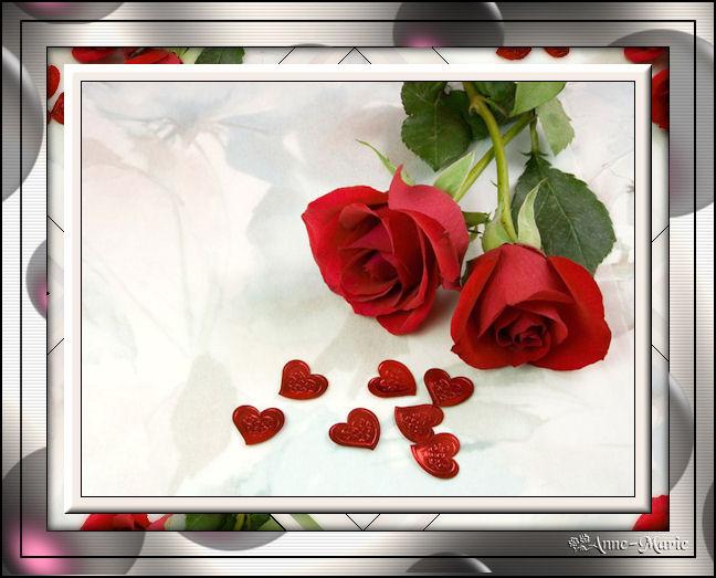 Ma rose (cadre Psp) 843639cadremarose