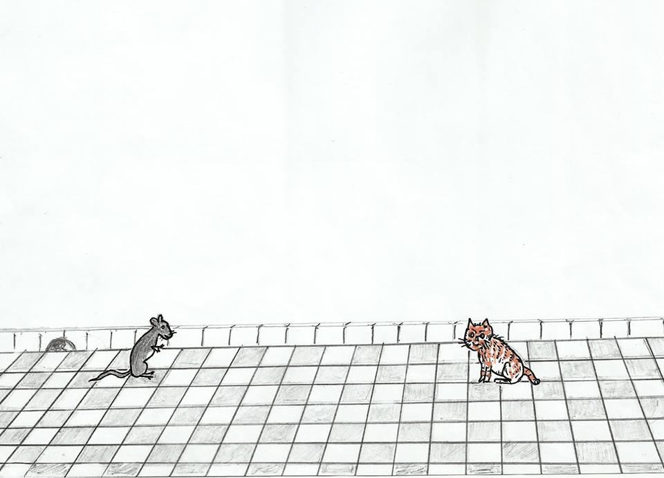 القط والفأر / محمد إبراهيم بوعلو 84611234f7