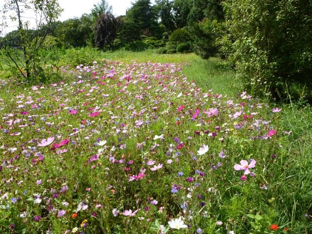 (26) Jardin Zen d'Erik Borja - Beaumont Monteux 852312P1020219