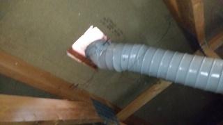 guepes sous toiture dans les combles 85293820140407193137