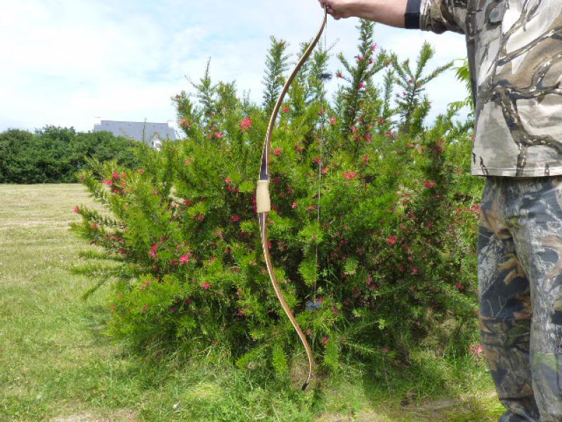 Chinook de Dan Toelke ( montana bows) 861228P1080350