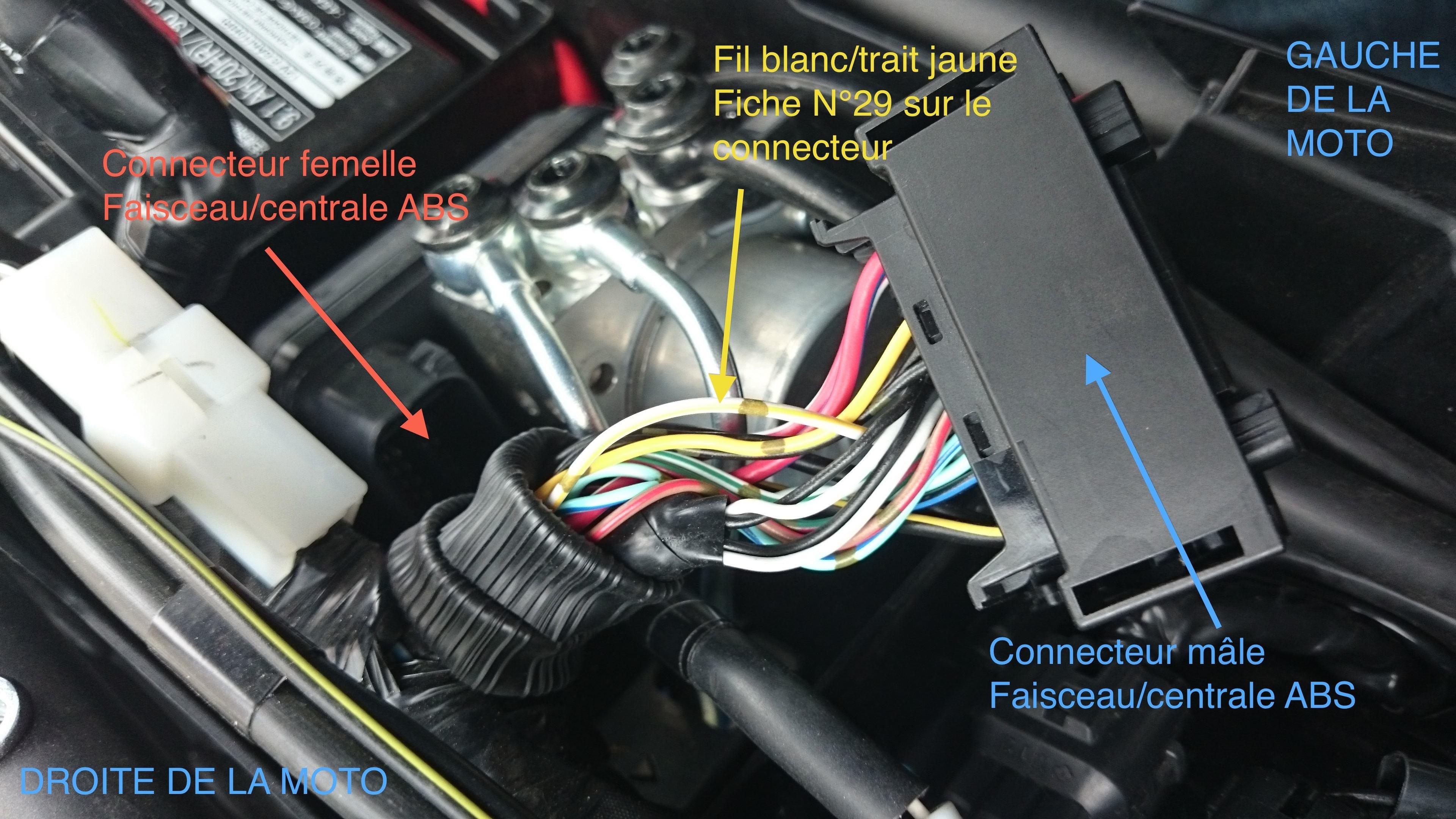 Speedohealer et MT09 abs 864346priseabs