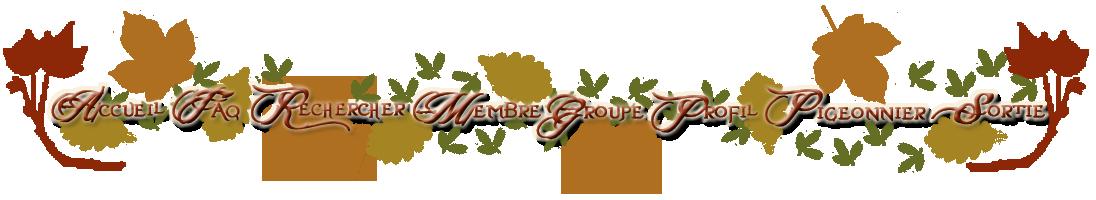 Les quatres saisons (thème forum) 865954Navigation2copie2