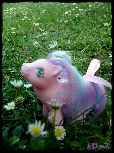 Les petits poneys de sOoZ - G1 à G5 867232P1140854