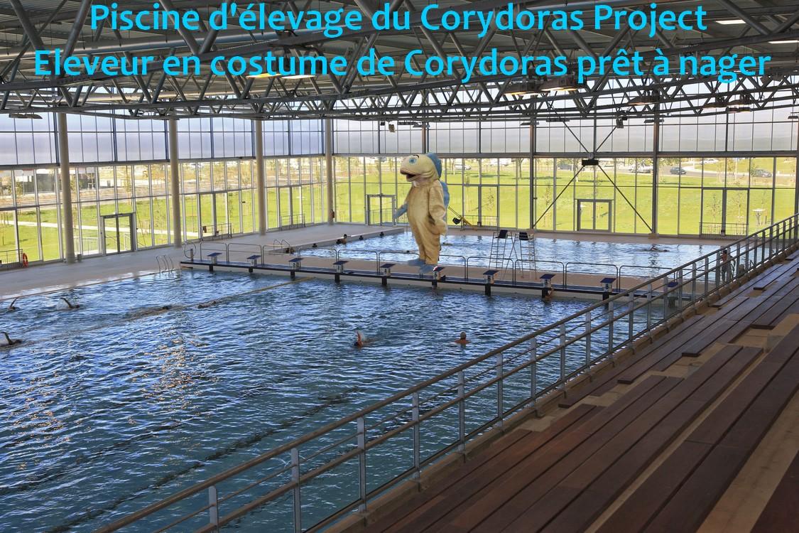 Ménagerie, plus de 3.000L d'aquariums - Page 2 869941Sanstitre2