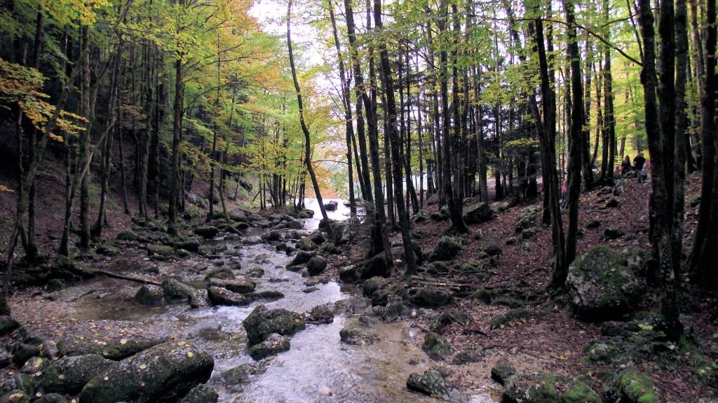 Les cascades du Hérisson 870588cascadesduHrisson24