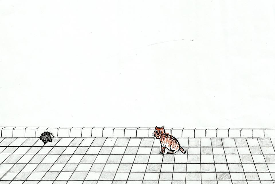 القط والفأر / محمد إبراهيم بوعلو 87151778f5