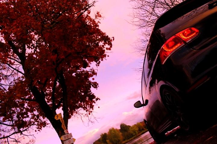 Golf 6 Gtd black - 2011 - 220 hp - Attente Neuspeed - question personnalisation insigne - Page 20 878456IMG7902bis