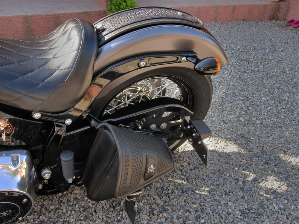 Softail Slim sous tous ses angles ! - Page 9 887706IMG1590