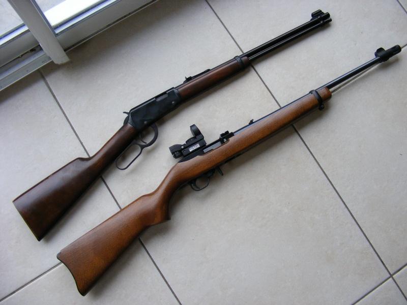 Mes armes [MaJ le 23/08/12] 8899608520