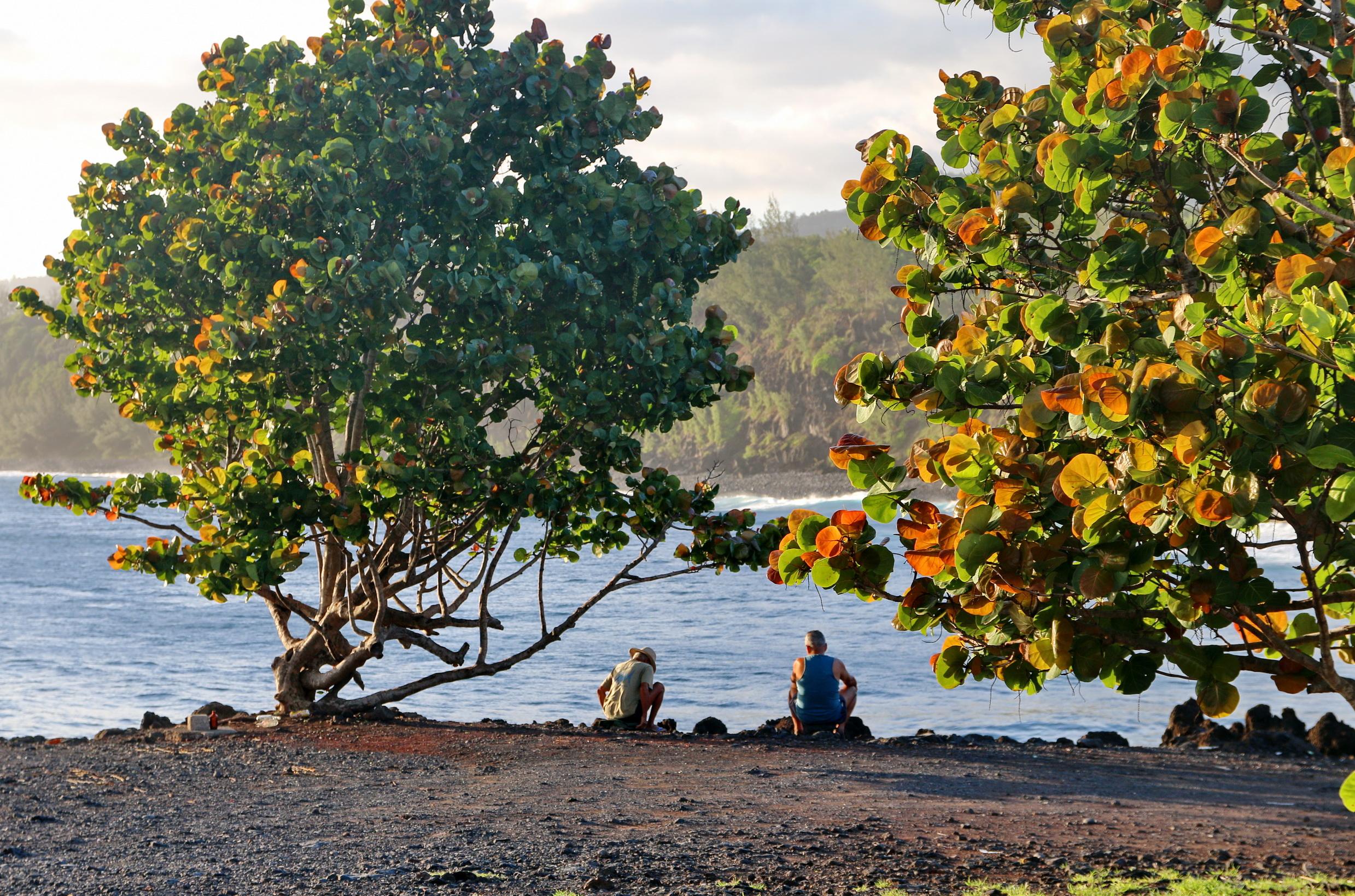 [Vie des ports] Les ports de la Réunion - Page 5 896706capmchantlangevin159