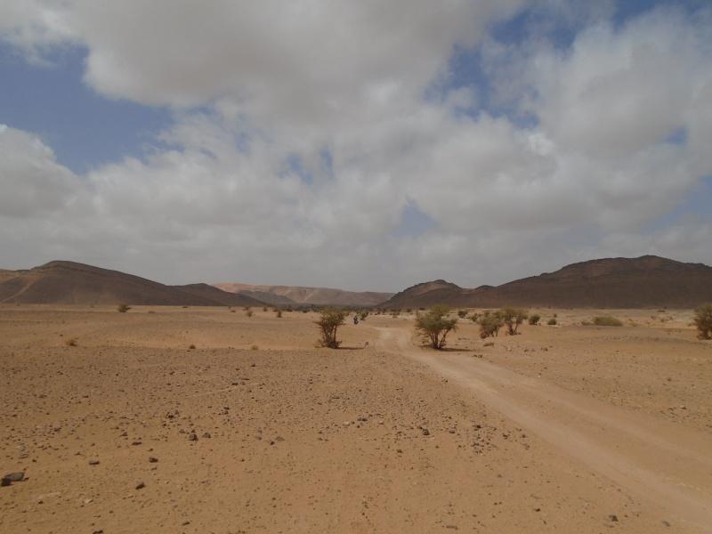 Maroc 2016 de Franck, Speedy et Maxou 897957DSC00526
