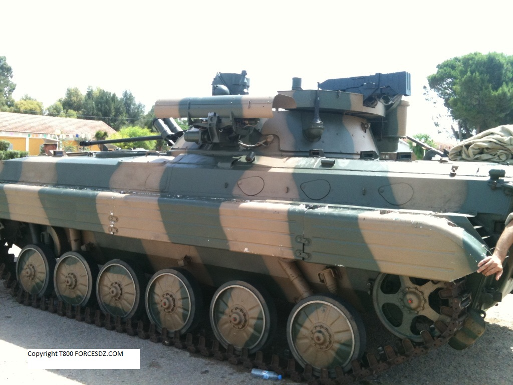 BMP-1 & BMP-2 in Russian Army - Page 6 898935newnew838814IMG07871