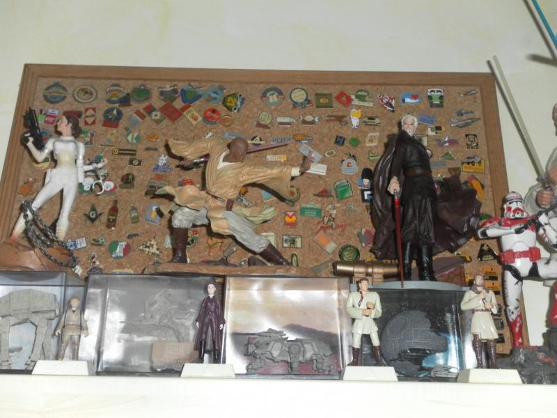 Collection n°176 - syljou - Page 2 899550SAM2448